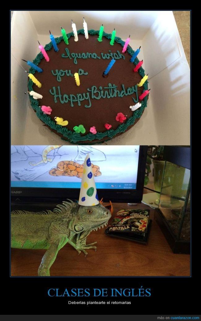 broma,fiesta,i wanna,iguana,no era así el original,pastel,reptil,tarta