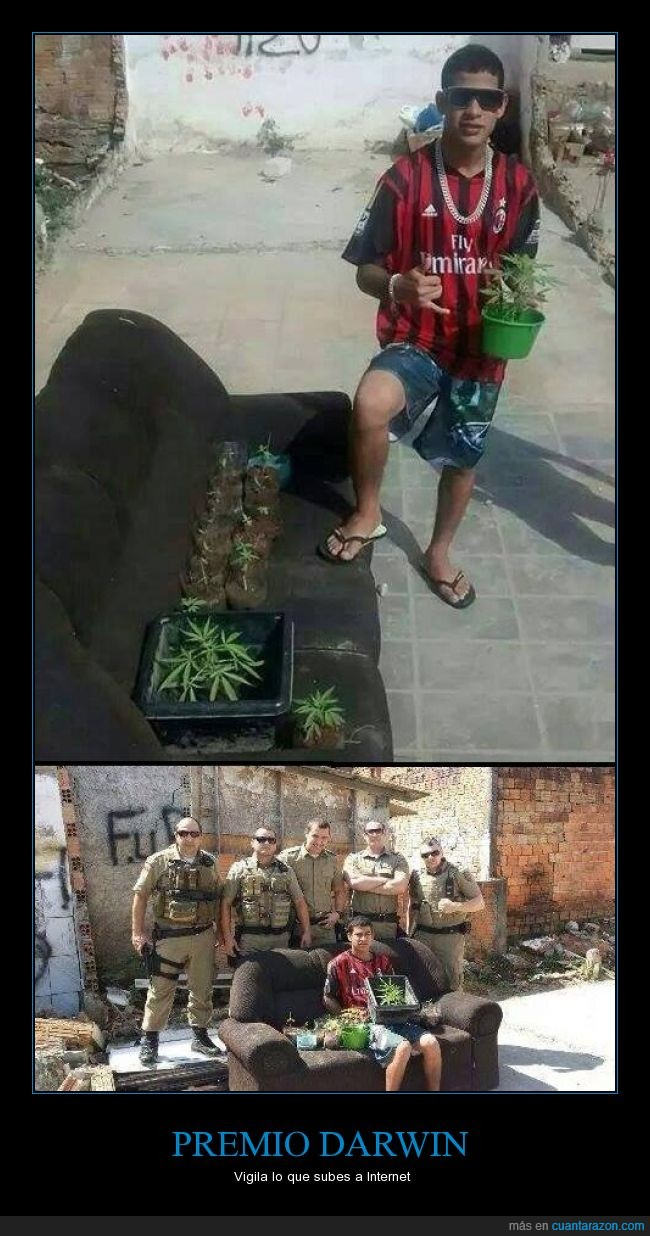 pillado,plantas,policía,tontaco,vacilar