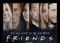 Enlace a FRIENDS 2014