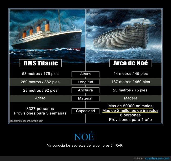 animales,arca  de noé,Biblia,caber,compresion,entrar,lógica,noé,rar,titanic