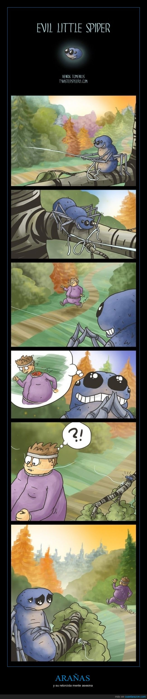 araña,decapitar,matar,pipsi pipsi araña mato a tu hermana,tela de araña