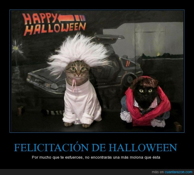 back to the future,doc,emmett brown,gato,halloween,happy,marty mcfly,regreso al futuro