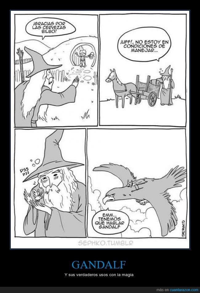 águila,alcohol,ave,beber,conducir,el señor de los anillos,Gandalf,hablar,llevar,magia,mago,taja,volar