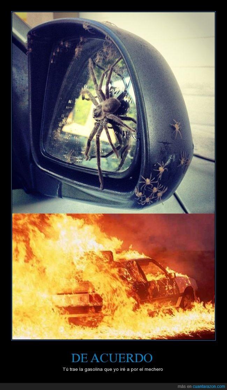 araña,coche,fuego,incendio,prender,quemar,retrovisor