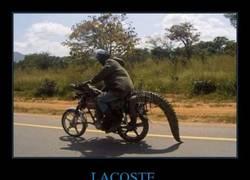 Enlace a Lacoste saca al mercado un nuevo producto para rivalizar con Vespa
