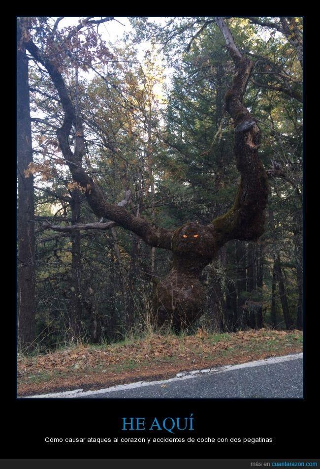 árbol,ataque,espanto,fantasma,humor,monstruo,susto,terror