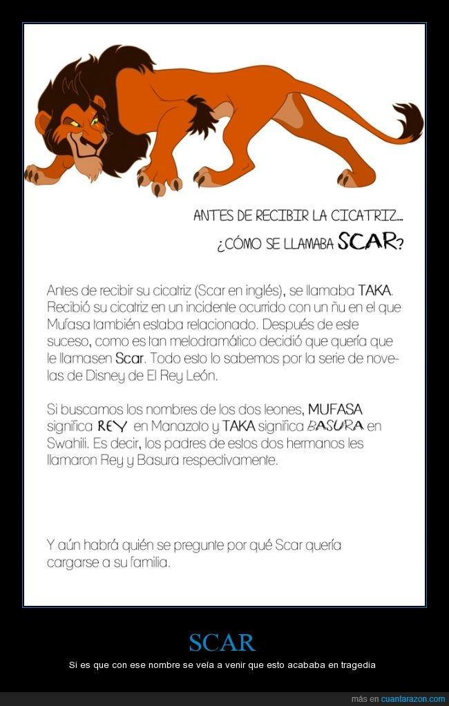 antes,basura,cicatriz,el rey leon,mufasa,nombre,rey,scar,simba significa León,swahili,taka