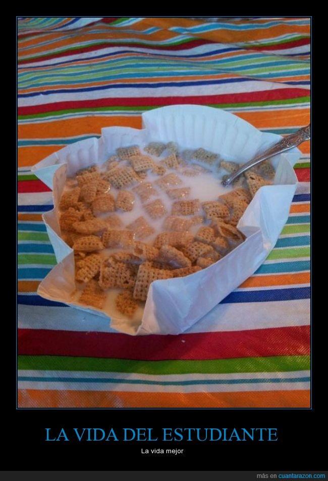 bol,ceramica,cereales,comer,cuchara,cutre,leche,plastico,plato