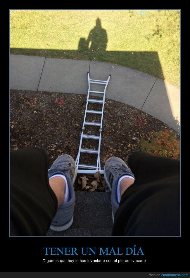 arreglar,ayuda,bajar,caer,escalera,techo,tejado