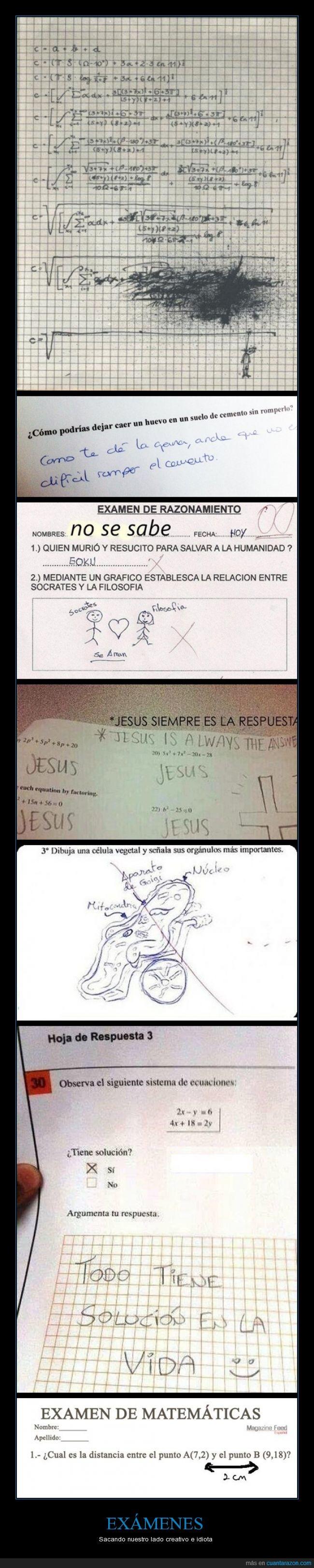 contestacion,contestar,examenes,jesus,respuesta,troll