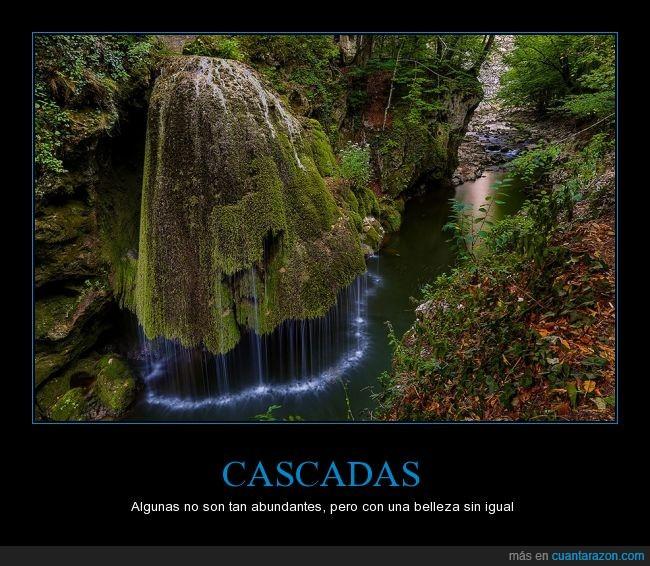 agua,belleza natural,caída,cascada,musgo