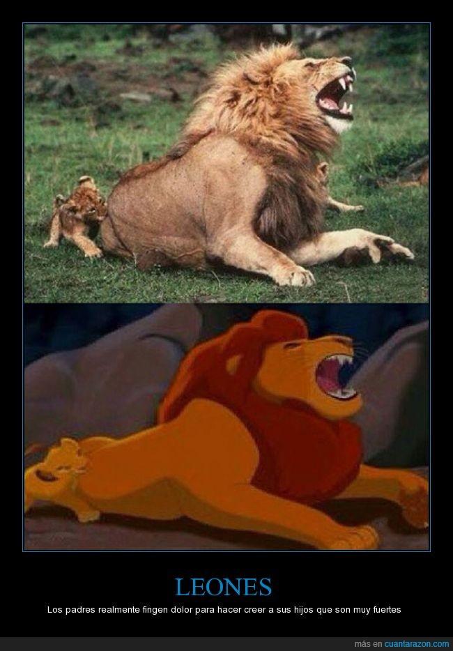 animar,atacar,creer,El Rey León,enseñar,fuerte,gritar,hijo,morder,Mufasa,pretend,Simba