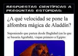 Enlace a ALFOMBRA MÁGICA