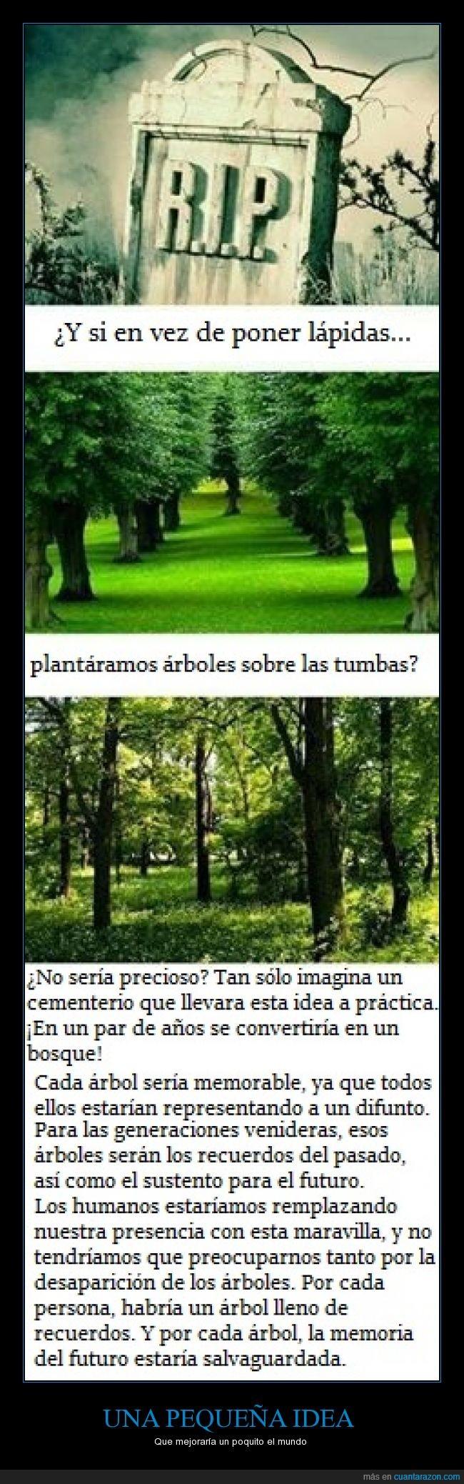 árbol,bosque,cementerio,idea,lápidas,mejorar,mundo,naturaleza,plantar