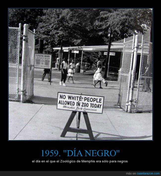 día,negros,prohibición,racismo,raza,zoológico