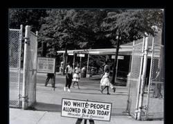 Enlace a 1959 y el Día Negro