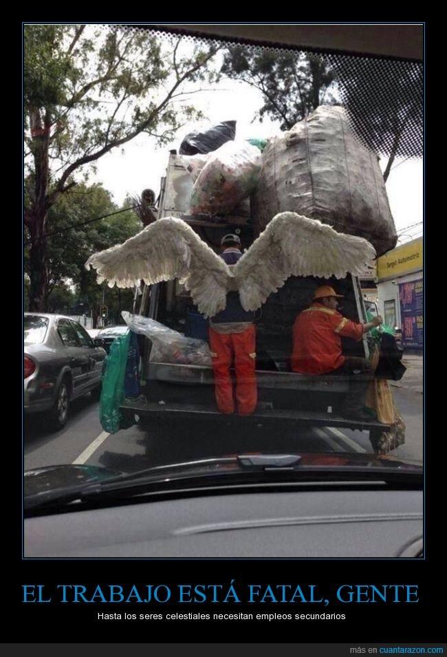 alas,angel,basura,basurero,camion,empleo,trabajar,trabajo