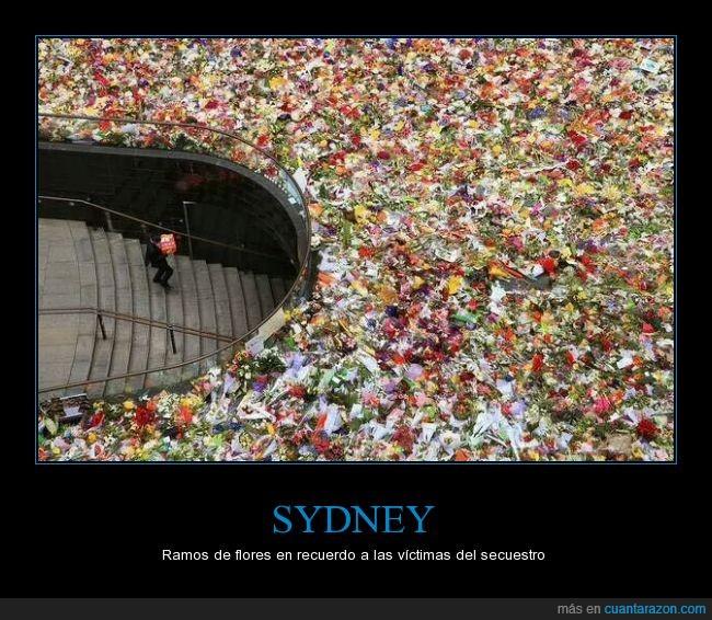 flor,Martin Place,noticias,ramo,recordatorio,secuestro,sociedad,solidadridad,sydney