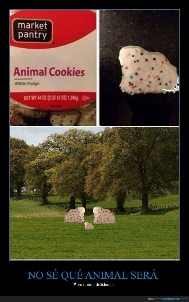 animales,bosque,figura,Galletas,parecer,tal vez sean ovejas