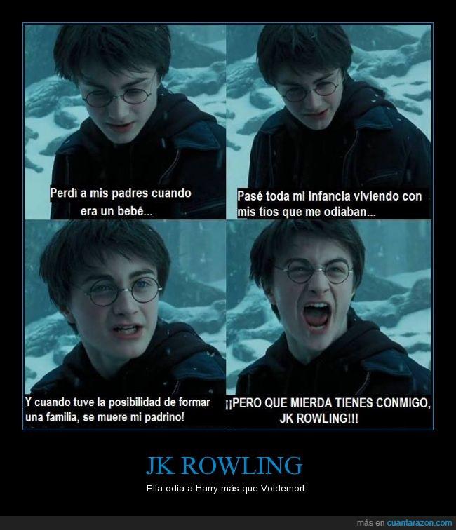 Harry Potter,huerfano,jk rowling,morir,padres,Sirius,tio,Voldemort
