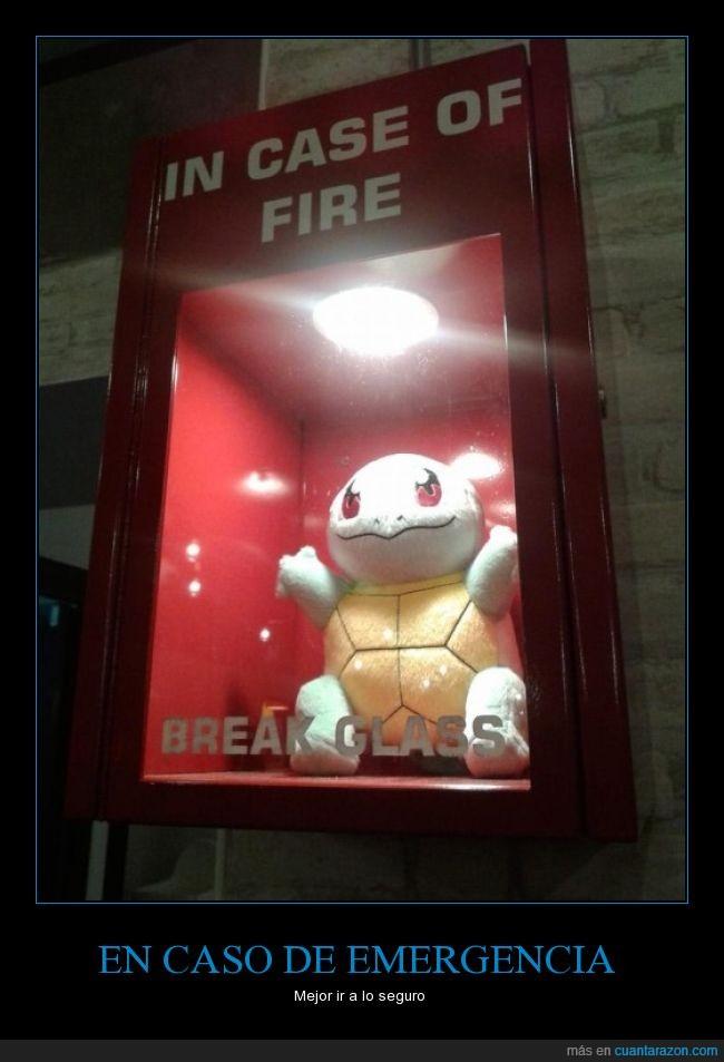 agua,emergencia,fuego,pokemon,romper,squirtle