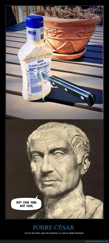 acuchillar,brutus,busto,julio cesar,matar,salsa