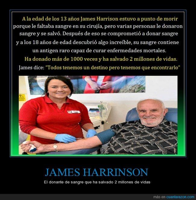 13 años,cirujia,donante de sangre,james harrinson,millones de vidas,salvador