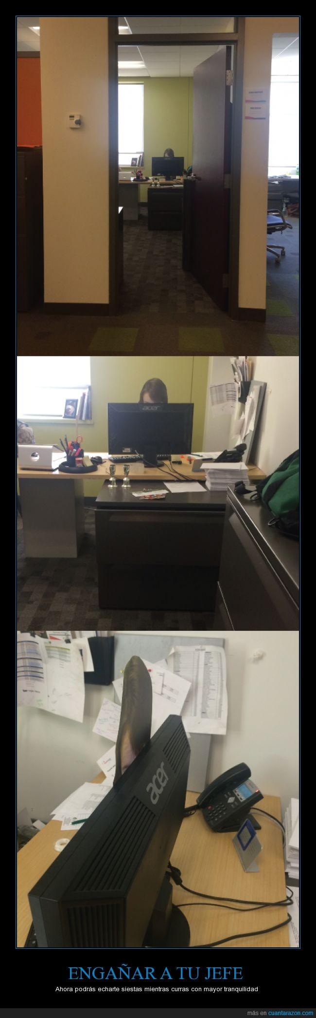 cabeza,encima,engañar,fotocopia,frente,impreso,imprimir,no hacer nada,pantalla,trabajar