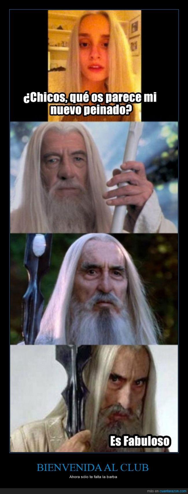 barba,blanco,Gandalf,liso,pelazo,Pelo,rubio,Saruman