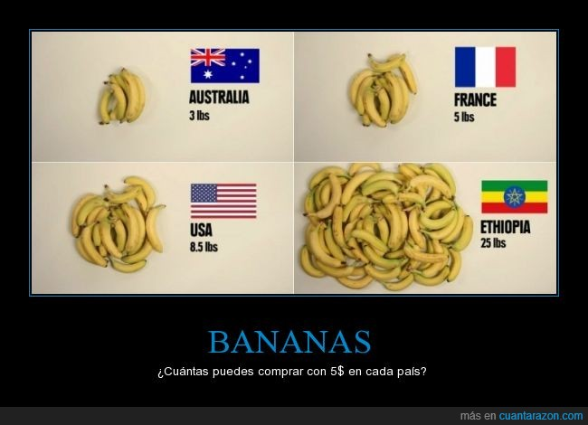 alimentos,bananas,conseguir $5 en Ethiopia es imposible,frutas,las que puedes comprar,platano