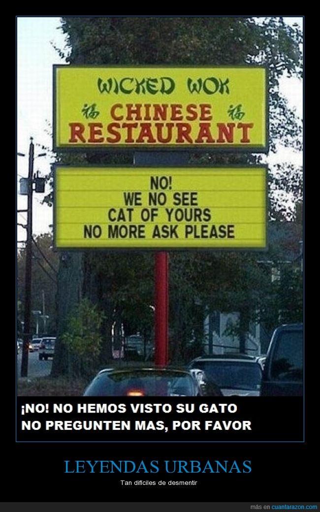 chino,comida,gato,perdido,restaurante,¿de verdad es pollo?