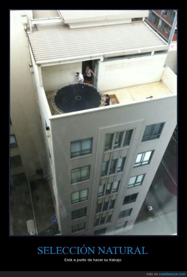 edificio,jugar,natural,saltar,seleccion,terraza,trampolin
