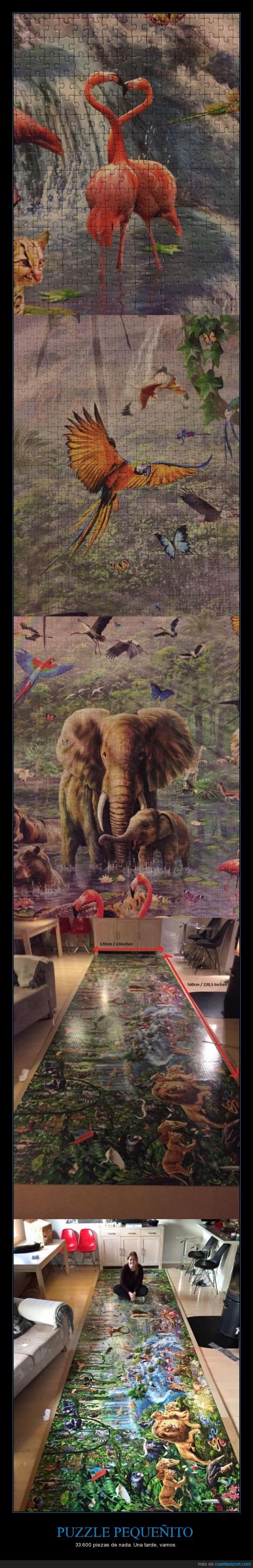 animales,paciencia,rompecabezas,si no me equivoco es el mas grande del mundo