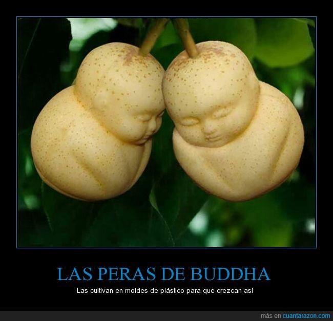 bebe,Buda,Buddha,cara,comida,fruta,molde,pera,plastico,rareza