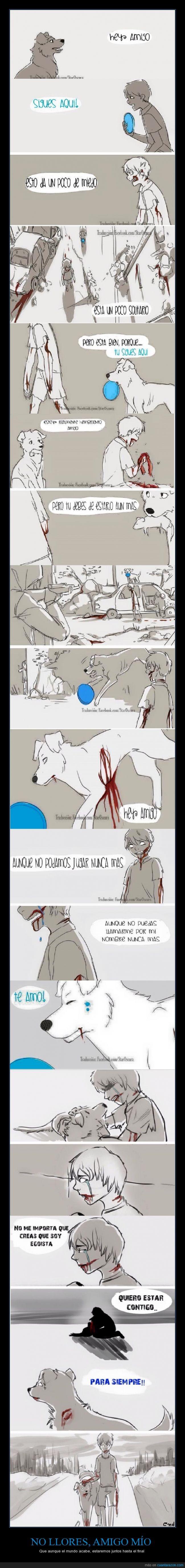 amistad,apocalipsis,fiel,Intenta no llorar y llora,No llorare,perro,Voy a llorar de verdad,zombie