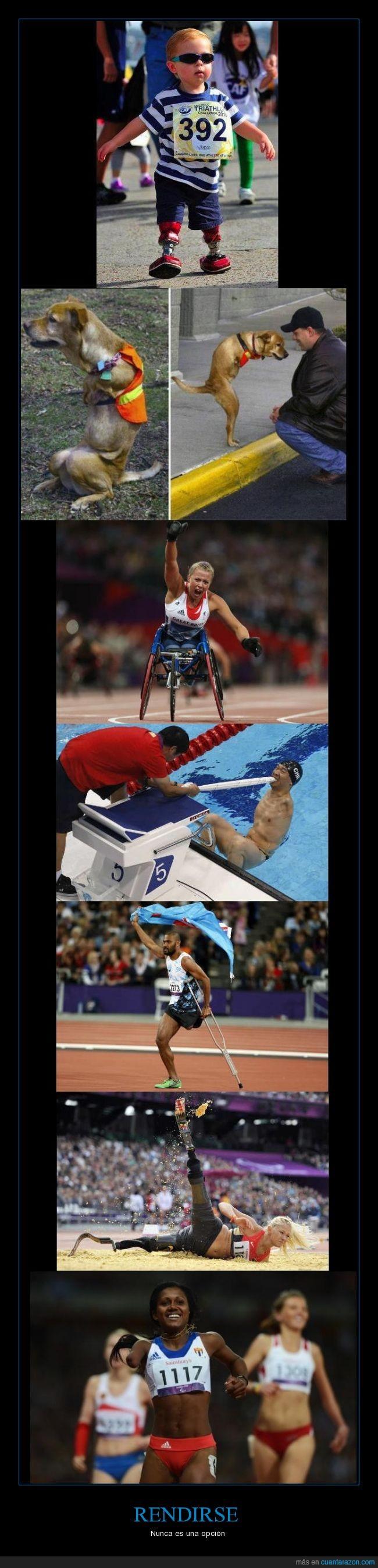 atleta,brazo,chulo,deporte,Esfuerzo,nińo,perro,piernas,rendirse