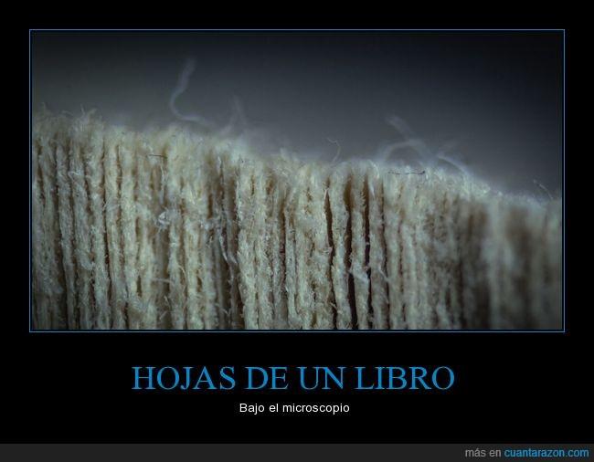 ampliación,canto,hojas,libro,libro cerrado,micoscopio,micro,zoom