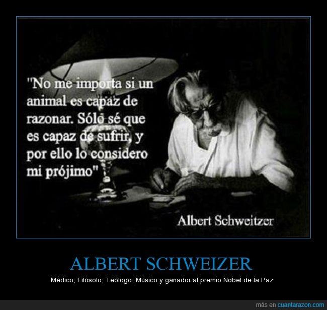Albert,Albert Schweitzer,Alemán,Animales,Filosofía,Filósofo,Frase,Ganador,Justicia,Médico,Misionero,Músico,Nobel,Premio,Premio Nobel,Respeto,Schweitzer,Teologia,Teólogo