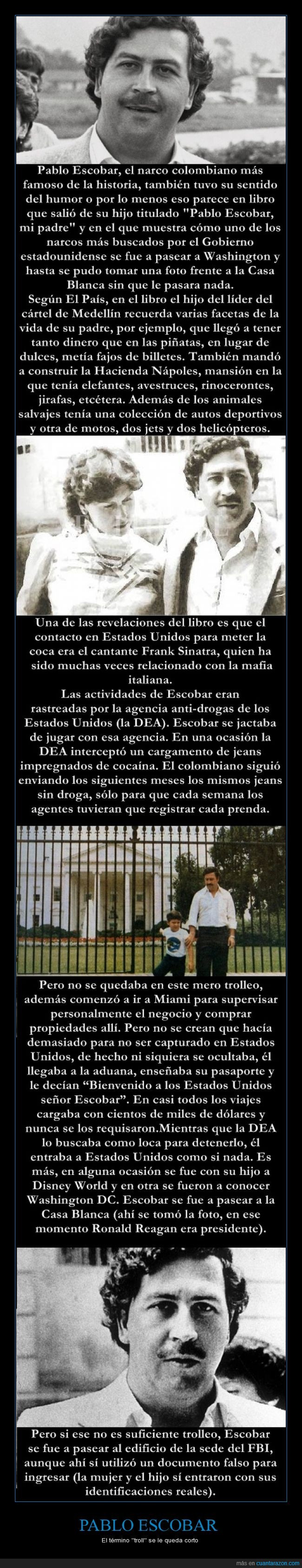 God Of Trolling,Pablo Escobar,Sopitas