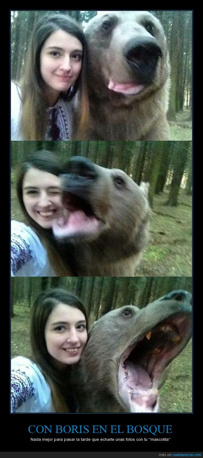 Boris,mascota,oso,plantígrado,Rusia