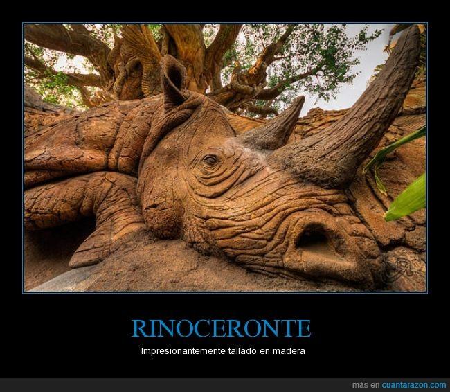 arbol,arte,escultura,madera,real,rinoceronte,tallado,tallar,textura