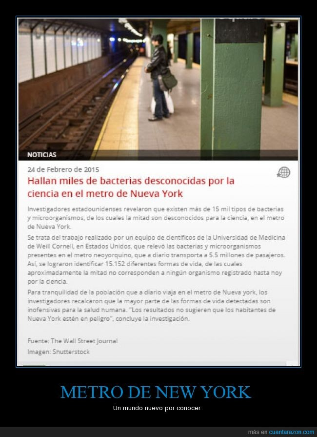 bacterias,metro,neoyorquino,new yor,nueva york,pasajeros,publico,transporte,tren