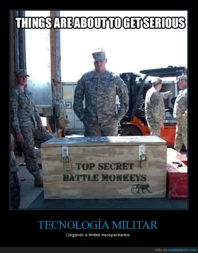 armas,caja,ejército,monos de batalla,soldados,top secret