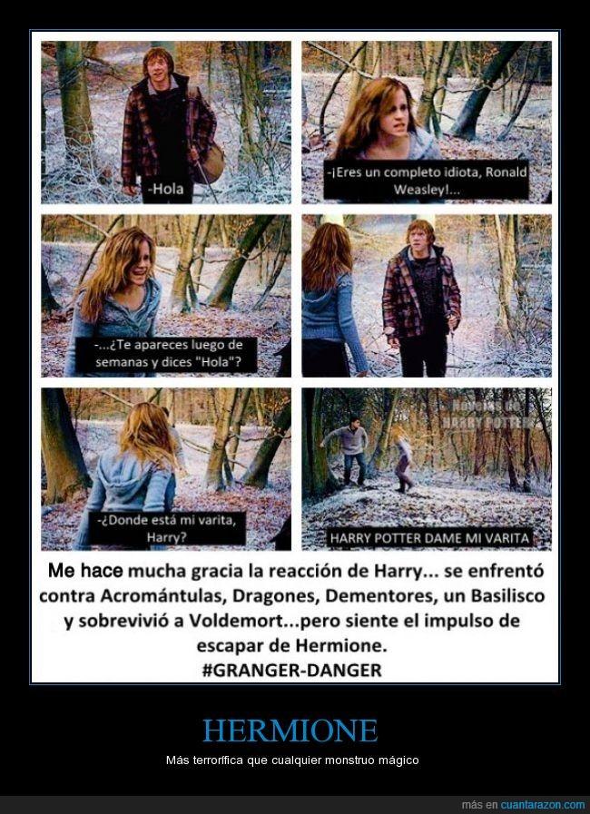 Danger,Granger,harry potter,hermione,huir,miedo,mostruos,reacción,ron,terror,varita