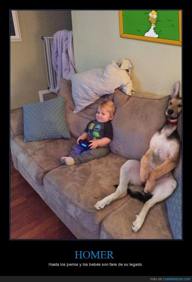 bebé,cuadro,esconder,Homer,humor,imitar,niño,perro,retrato,Simpson,sofá