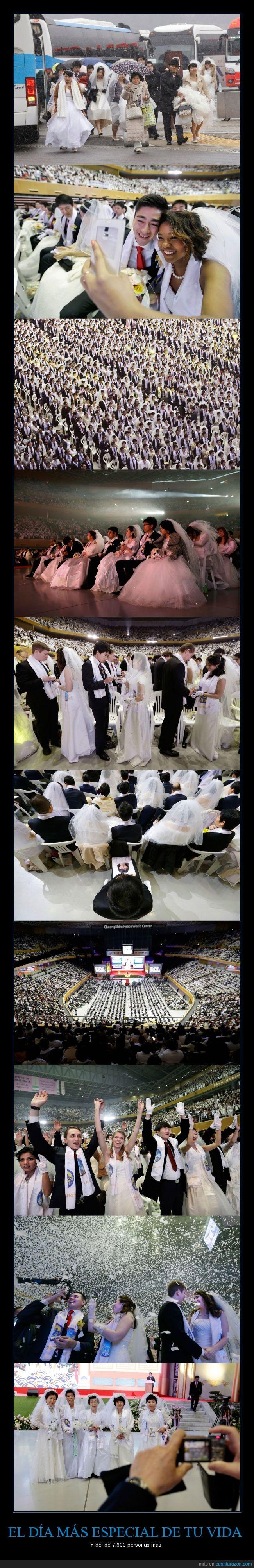 boda,casar,congreso,Corea,masiva,matrimonio,palacio,pareja