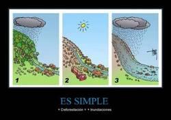 Enlace a ES SIMPLE