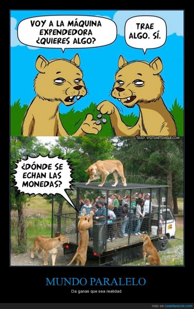 jaula,leonas,metamos a los corruptos,mundo paralelo,tigresas,zoológico