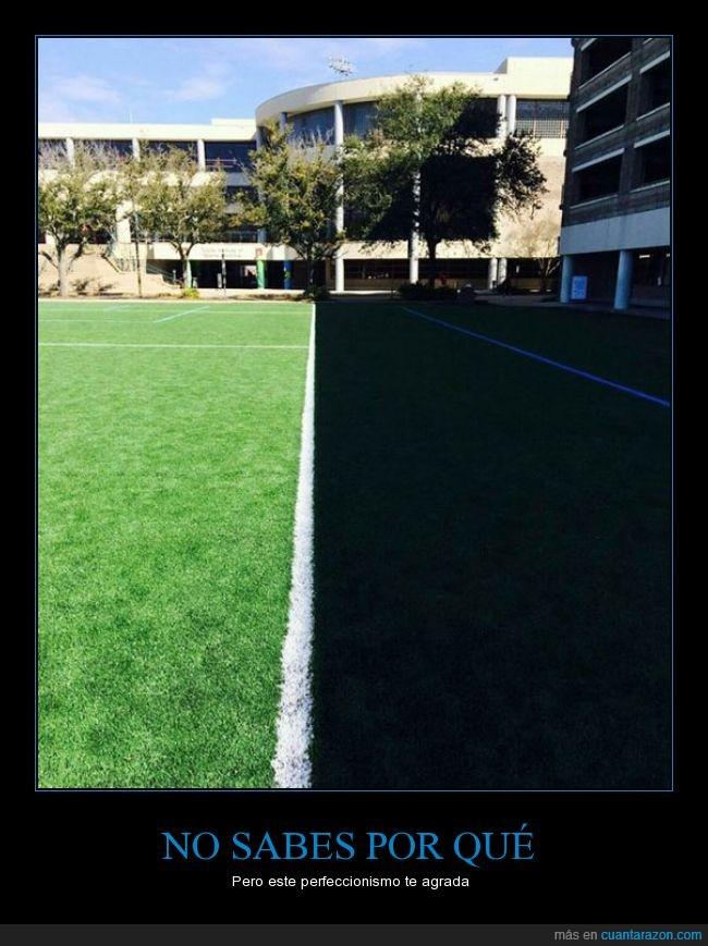 alineado,campo,futbol,linea,perfeccion,perfecto,recto,sombra