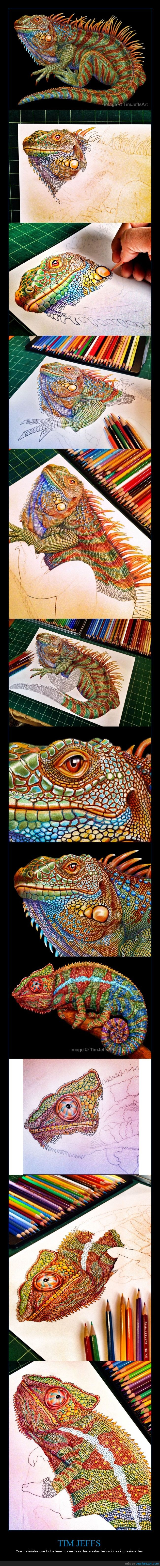 camaleon,color,dibujo,ilustracion,lagarto,madera,Tim Jeffs